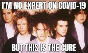 Meme made from a photo of the cure that reads I am not expert on coronavirus but this is the cure to demonstrate freelancers survive coronavirus article