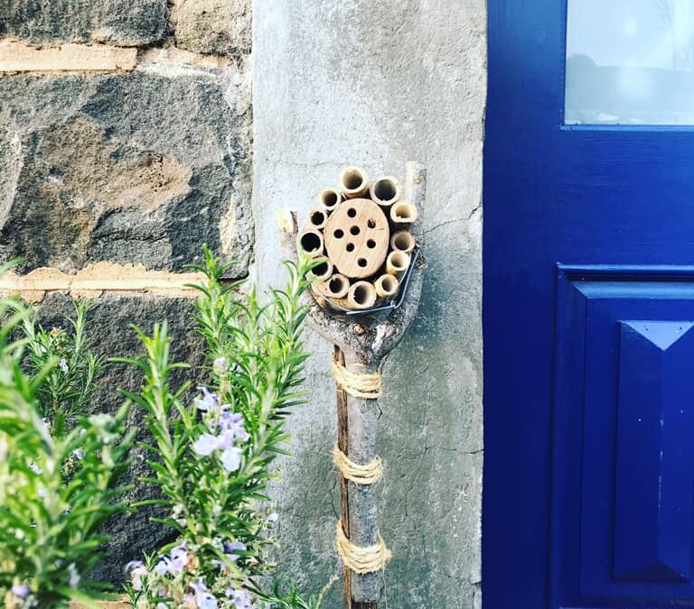 A bee hotel leans against a wall next to a blue front door. It has been made by freelance makers.