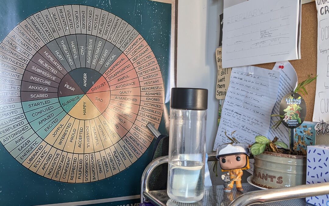 A poster with a circle of feelings within is stuck on an office wall. It begins with happy, surprise, feae, anger, disgust, sad and circles out. It is surrounded by a coloured shelf set, a water bottle, bushfire pop and dying plant. This is the feelings poster referred to in the body of the freelance story blog.