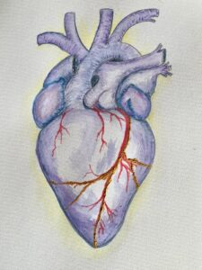 A blue kintsugi heart with red arteries created with water colour pencils
